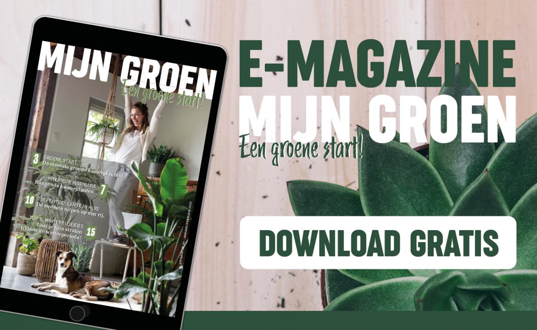 Gratis e-magazine